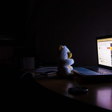 teddy bear looking at laptop